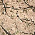 Dry Dry Dry