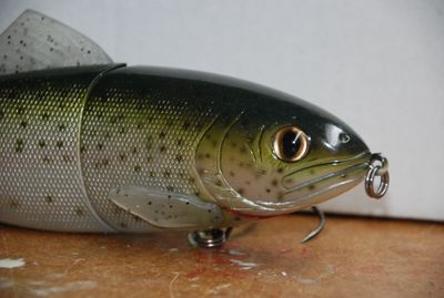JSJ 10 inch trout
