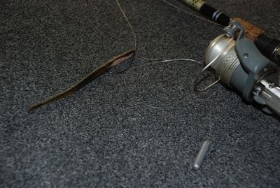 Top 10 Bass Baits Robo Worm
