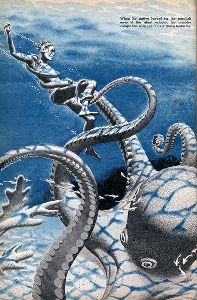 Octopus_wrestling