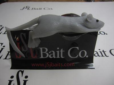 Rat pictures 023